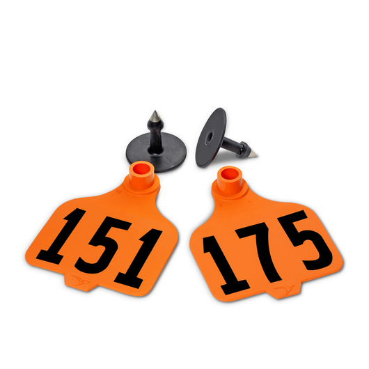 Destron Fearing™ Large Numbered Tags (with Studs) - Orange, Numbers 151-175