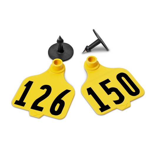 Destron Fearing™ Large Numbered Tags (with Studs) - Yellow, Numbers 126-150