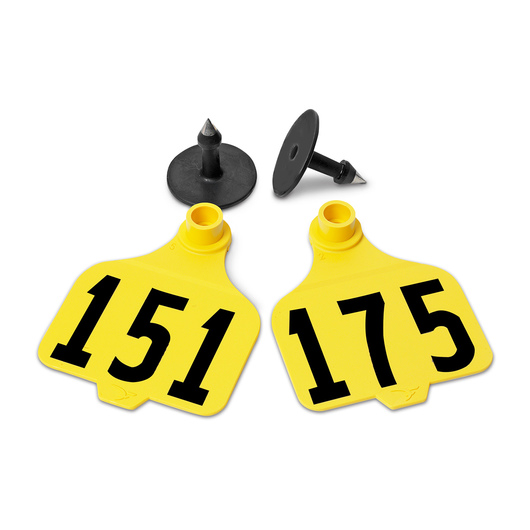 Destron Fearing™ Large Numbered Tags (with Studs) - Yellow, Numbers 151-175