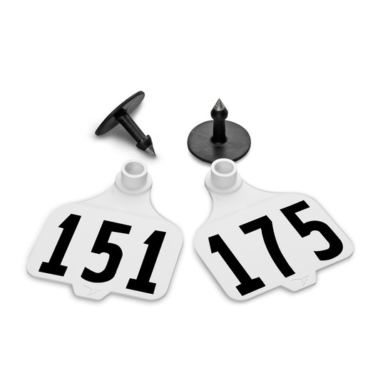 Destron Fearing™ Large Numbered Tags (with Studs) - White, Numbers 151-175
