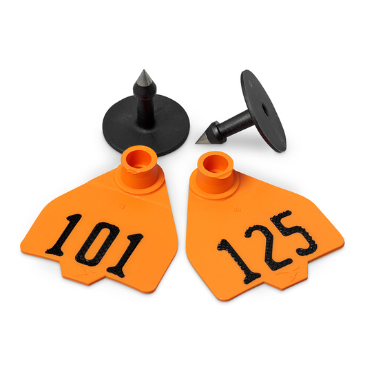 Destron Fearing™ Medium Numbered Tags (with Studs) - Orange, Numbers 101-125