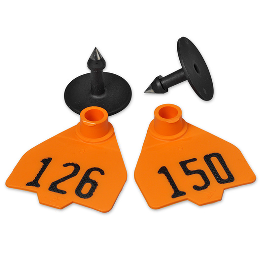 Destron Fearing™ Medium Numbered Tags (with Studs) - Orange, Numbers 126-150