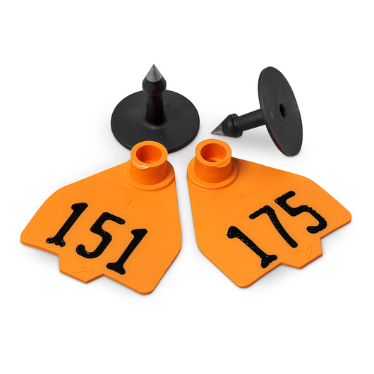 Destron Fearing™ Medium Numbered Tags (with Studs) - Orange, Numbers 151-175