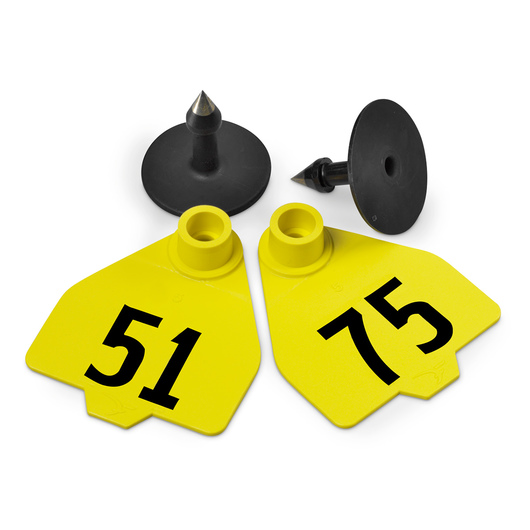 Destron Fearing™ Medium Numbered Tags (with Studs) - Yellow, Numbers 51-75