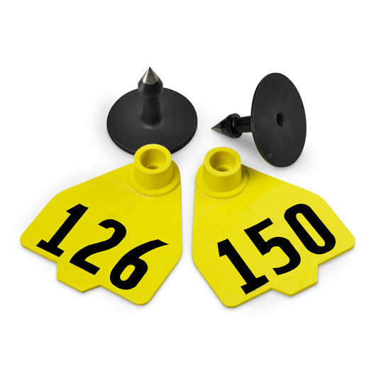 Destron Fearing™ Medium Numbered Tags (with Studs) - Yellow, Numbers 126-150