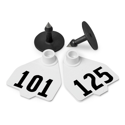 Destron Fearing™ Medium Numbered Tags (with Studs) - White, Numbers 101-125