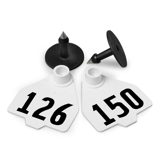 Destron Fearing™ Medium Numbered Tags (with Studs) - White, Numbers 126-150