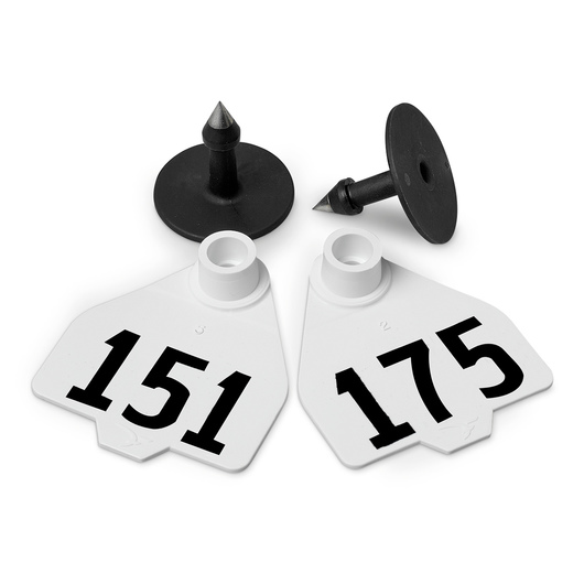 Destron Fearing™ Medium Numbered Tags (with Studs) - White, Numbers 151-175