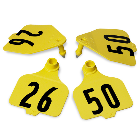 Destron Fearing™ Large Double Panel Numbered Tags (with Studs) - Yellow, Numbers 26-50