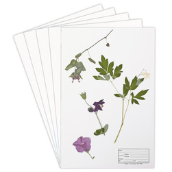 Plant Mounting Sheets