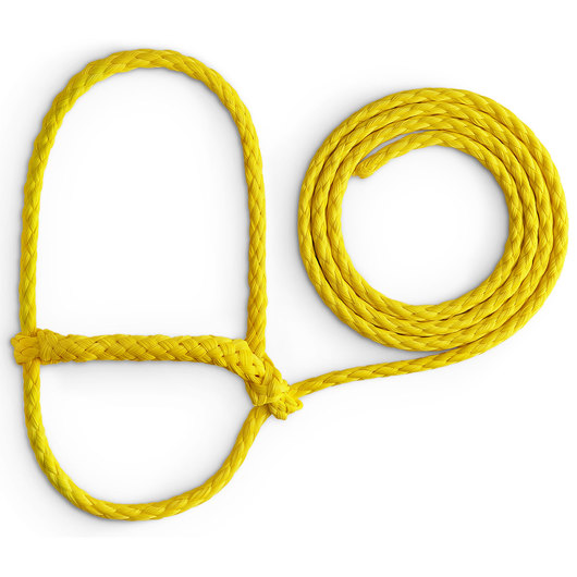 Sheep Halter with 6-ft. Lead - Yellow