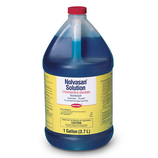 Nolvasan® Solution - Gallon Bottle