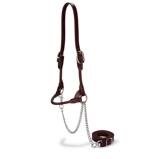 Double-Buckle Slimline Round Strap Show Halter - Yearling, Chocolate