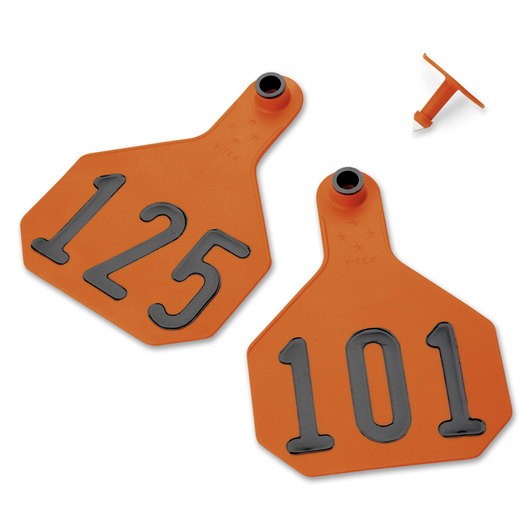Y-TEX® Large 3-1/4 x 4-3/4 4-Star Ear Tags (with Studs) - Orange, Numbered 101-125