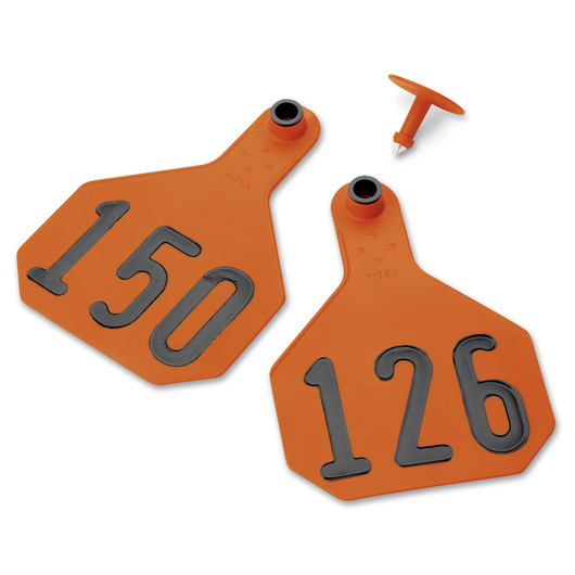 Y-TEX® Large 3-1/4 x 4-3/4 4-Star Ear Tags (with Studs) - Orange, Numbered 126-150