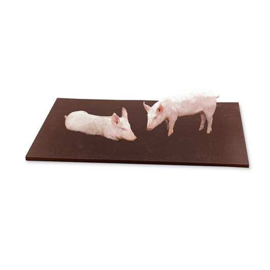 Humane Hog Breeding/Gestation/Farrowing Stall Mat