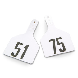 Z1 No-Snag-Tags® One-Piece Numbered Ear Tags, Cow Size 3 in. x 4-1/2 in. - White, Numbers 51-75