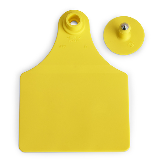 Allflex® Global Maxi Female Blank Tags (with Studs) - Yellow