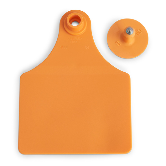 Allflex® Global Maxi Female Blank Tags (with Studs) - Orange