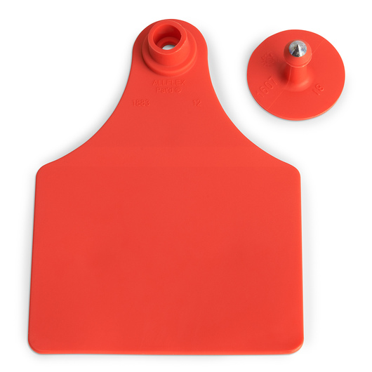 Allflex® Global Maxi Female Blank Tags (with Studs) - Red