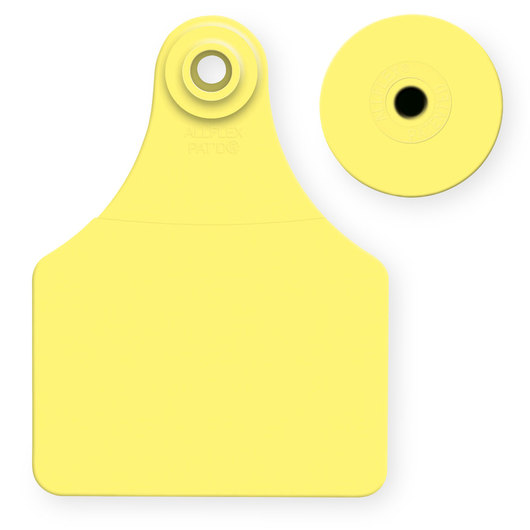 Allflex® Global Large Female Blank Tags (with Studs) - Yellow