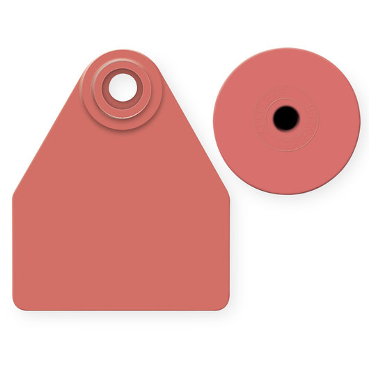 Allflex® Global Medium Female Blank Tags (with Studs) - Red
