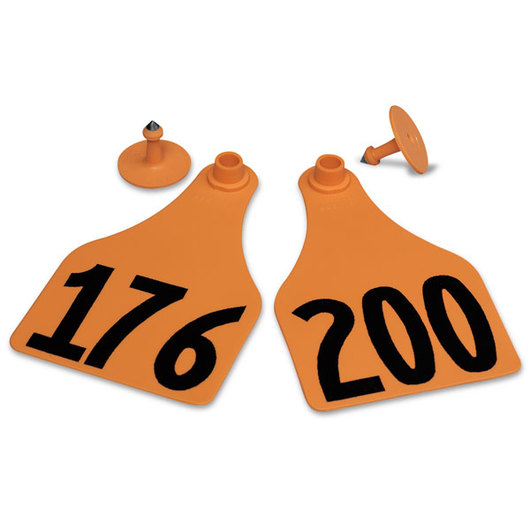 Allflex® Global Super Maxi Female Numbered Tags (with Studs) - Orange, Numbers Over 1,000