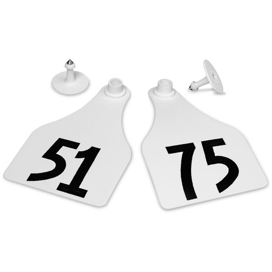 Allflex® Global Super Maxi Female Numbered Tags (with Studs) - White, Numbers 51-75