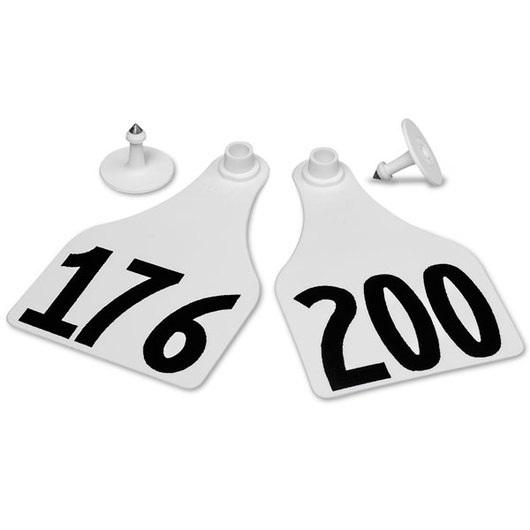 Allflex® Global Super Maxi Female Numbered Tags (with Studs) - White, Any Number 201-999