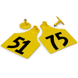 Allflex® Global Maxi Female Numbered Tags (with Studs) - Yellow, Numbers 51-75