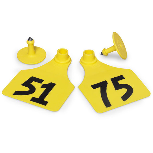 Allflex® Global Large Female Numbered Tags (with Studs) - Yellow, Numbers 51-75