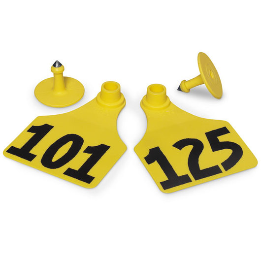 Allflex® Global Large Female Numbered Tags (with Studs) - Yellow, Numbers 101-125