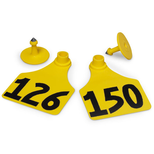 Allflex® Global Large Female Numbered Tags (with Studs) - Yellow, Numbers 126-150