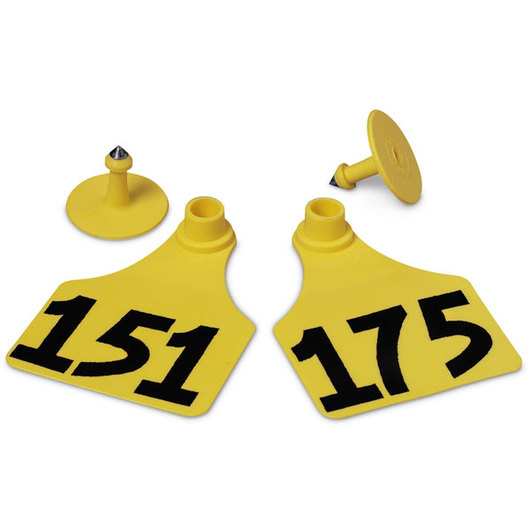 Allflex® Global Large Female Numbered Tags (with Studs) - Yellow, Numbers 151-175