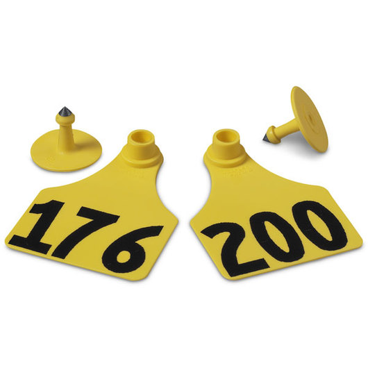 Allflex® Global Large Female Numbered Tags (with Studs) - Yellow, Numbers Over 1,000