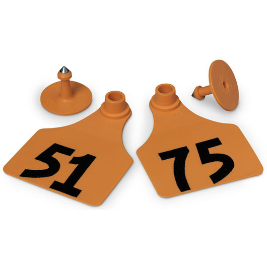 Allflex® Global Large Female Numbered Tags (with Studs) - Orange, Numbers 51-75