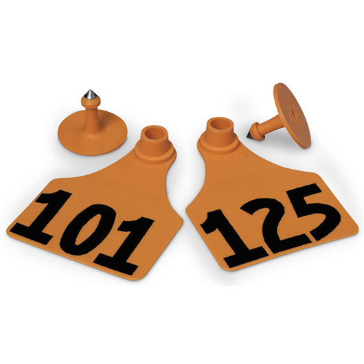 Allflex® Global Large Female Numbered Tags (with Studs) - Orange, Numbers 101-125
