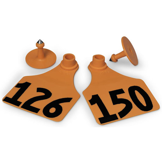 Allflex® Global Large Female Numbered Tags (with Studs) - Orange, Numbers 126-150