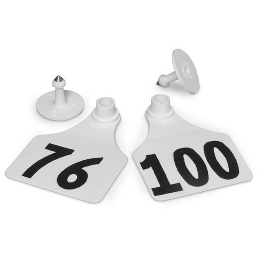 Allflex® Global Large Female Numbered Tags (with Studs) - White, Numbers 76-100