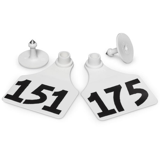 Allflex® Global Large Female Numbered Tags (with Studs) - White, Numbers 151-175