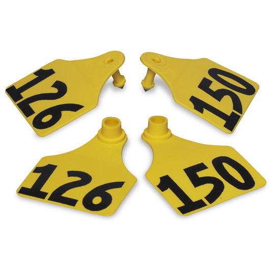 Allflex® Global Large Double Female Numbered Tags (with Studs) - Yellow, Numbers 126-150