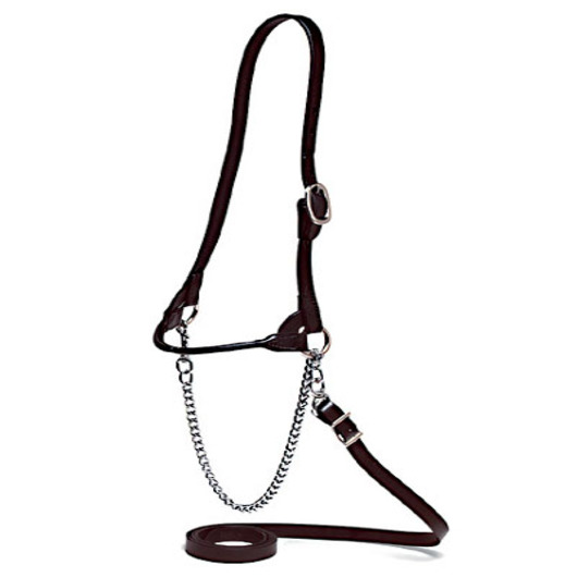 Single-Buckle Slimline Round Strap Show Halter - Large Cow/Bull, Black