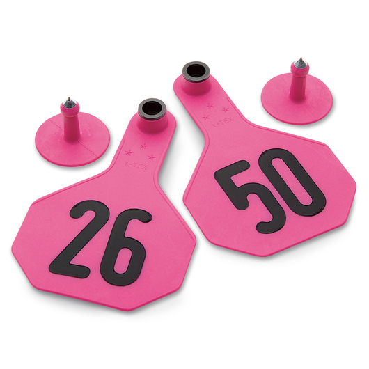 Y-TEX® Medium 2-1/2 in. x 4 in. 3-Star Ear Tags (with Studs) - Hot Pink - Numbered 26-50