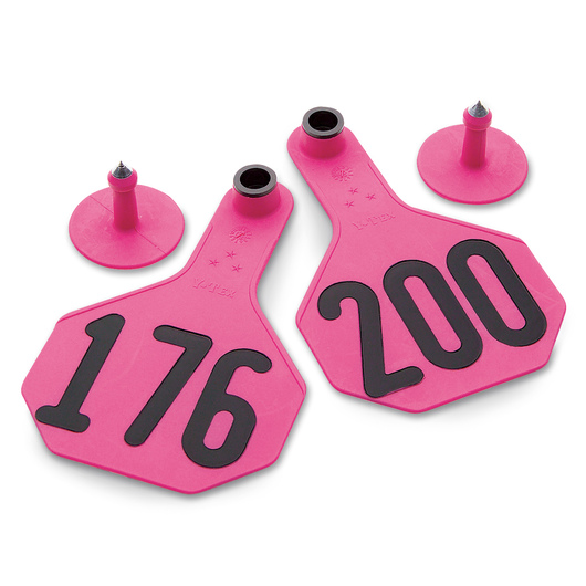 Y-TEX® Medium 2-1/2 in. x 4 in. 3-Star Ear Tags (with Studs) - Hot Pink - Numbered 176-200