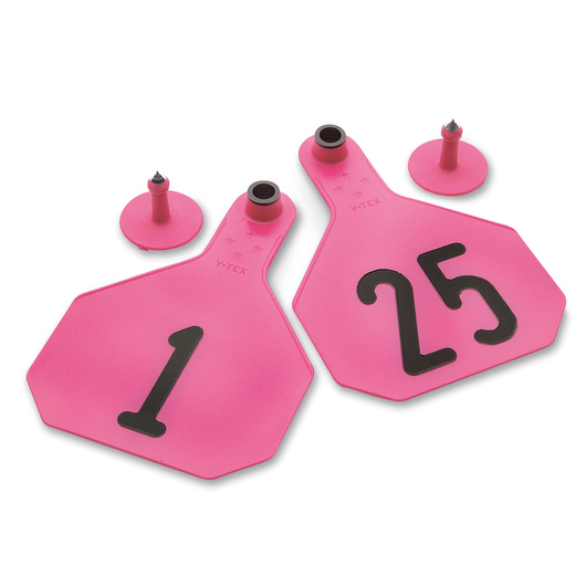 Y-TEX® Large 3-1/4 x 4-3/4 4-Star Ear Tags (with Studs) - Hot Pink - Numbered 1-25