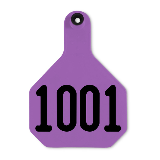 Y-TEX® Large 3-1/4 in. x 4-3/4 in. 4-Star Ear Tags (with Studs) - Purple, Numbered 1,001-10,000