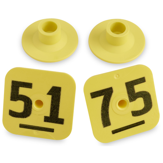 Destron Fearing™ Litter Max Numbered Hog Tags - Yellow, Numbers 51-75