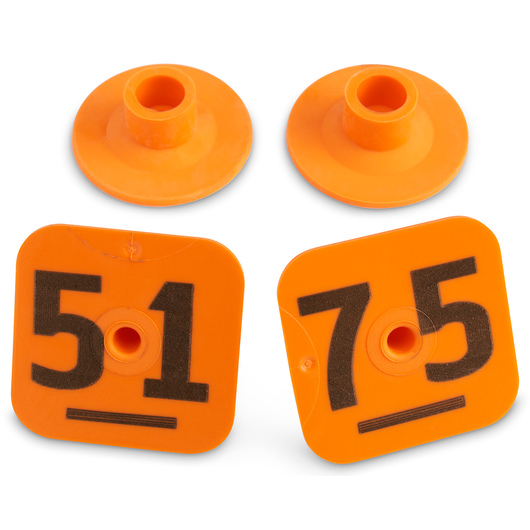 Destron Fearing™ Litter Max Numbered Hog Tags - Orange, Numbers 51-75