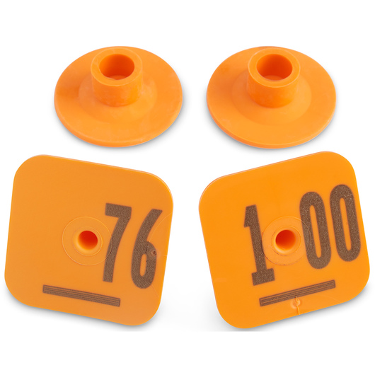 Destron Fearing™ Litter Max Numbered Hog Tags - Orange, Numbers 76-100