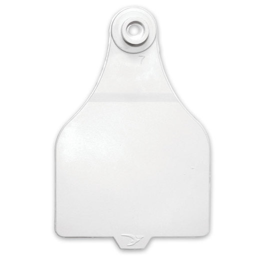 Destron Fearing™ Extended Large Blank Tags (with Studs) - White, Pack of 25